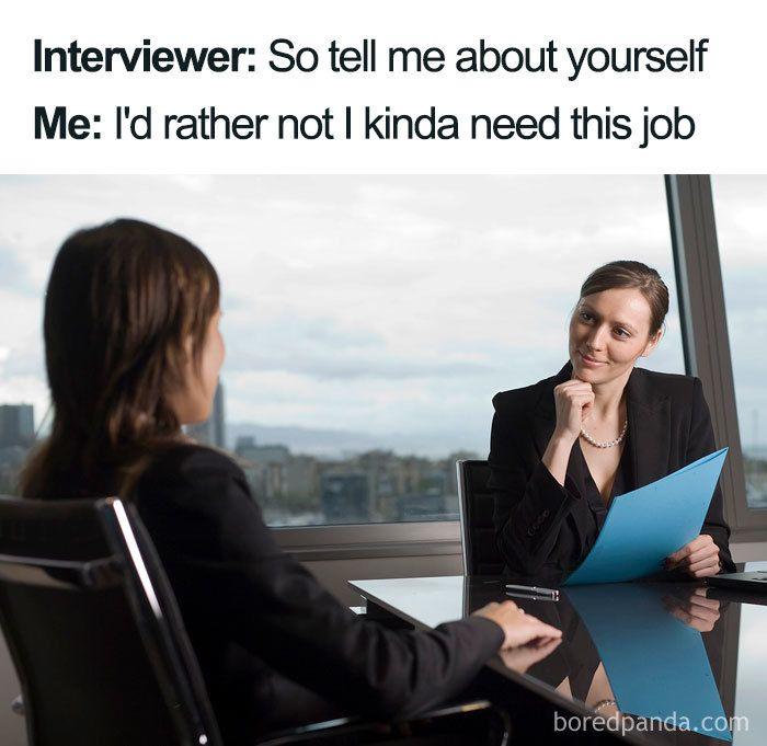 Job Interview Memes Funny Jobs Funny Internet Memes Internet Funny