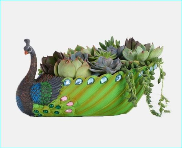 Pea Home Decor Accessories