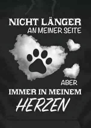 Schnief … für immer … schnüffeln   – Trauer Hund/Katze