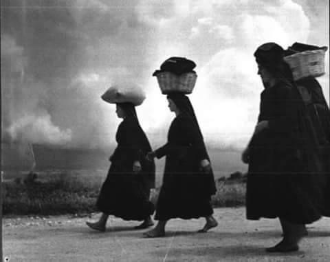 Donne di Sardegna
