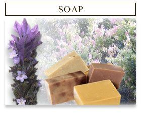 A great, in-depth webpage all about homemade soaps and shampoos. Awesome.