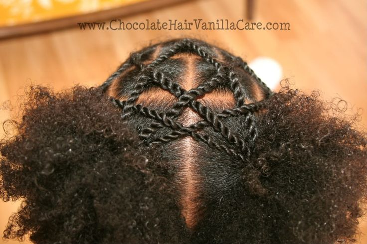 Two Strand Rope Twist Veil with Two Puffs | Chocolate Hair / Vanilla Care: Style Gallery