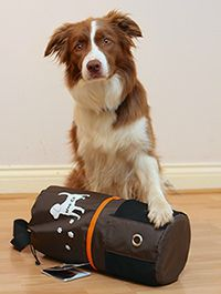 Tailster Giveaway – Wag N' Go Dog Travel Bag