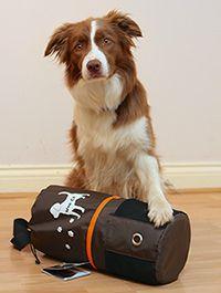 Tailster Giveaway – Wag N' Go Dog Travel Bag