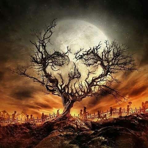 halloween optical illusions hallowen org