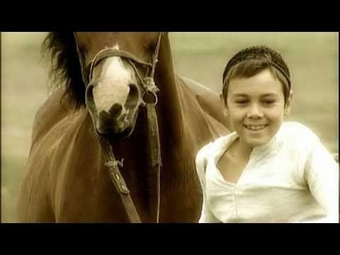 Фильмы о лошадях. Трехногая кобыла (2009)