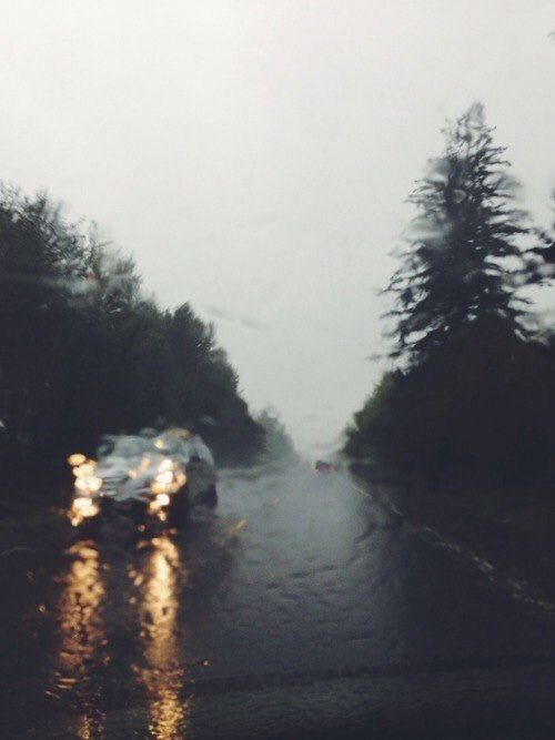 November 23: rain on the way home from Silverdale today.