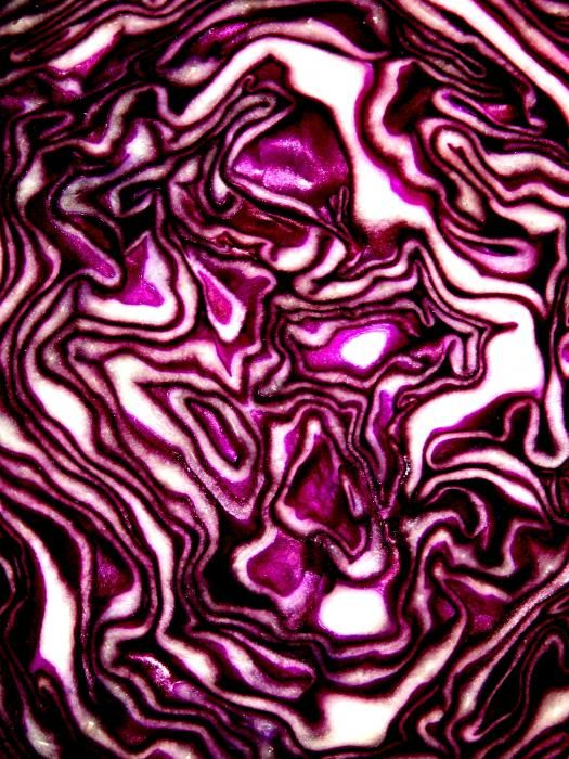 This purple cabbage looks almost topographicalTopographic Recipe, Purple Cabbage Print, Cabbages Art, Purple Cabbages, Purple'S Whit, Red Cabbages