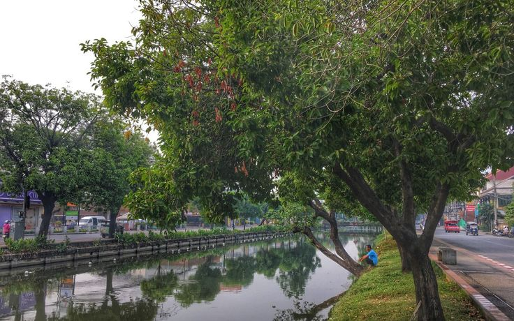 How to Spend Three Days in Chiang Mai