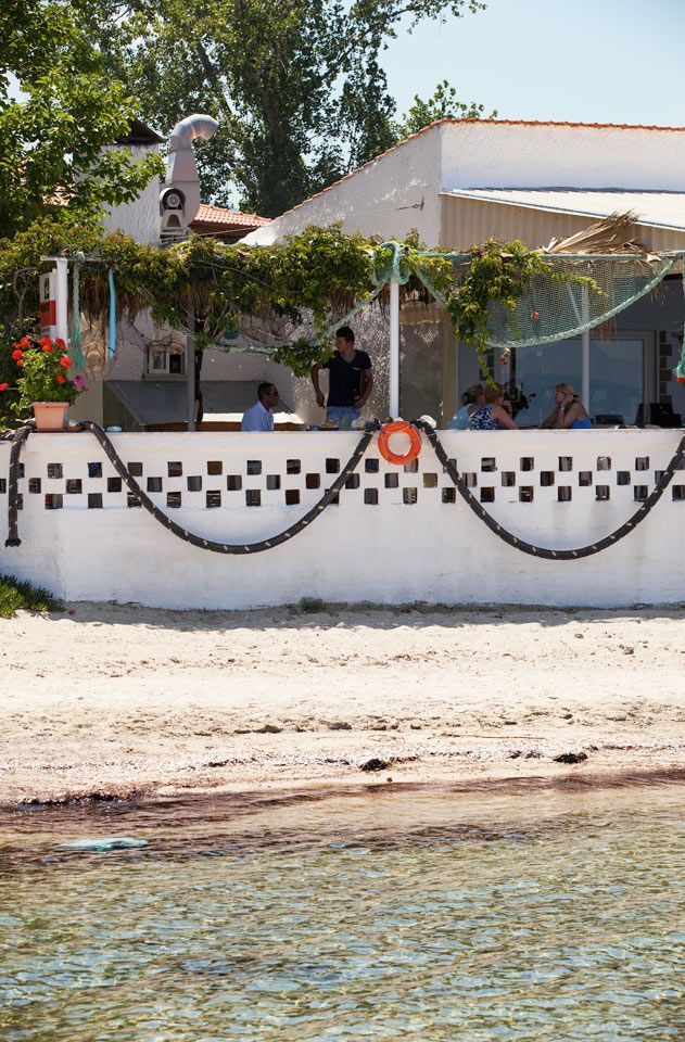 Skala Rachonia ympäröivät oliivilehdot, ja siellä menee monia jännittäviä reittejä ja polkuja, joita voi seurata. Usein polut johtavat pienelle rannalle tai tavernaan, jossa voit rentoutua ja nauttia päivästä. #Thassos #Kreikka #Greece #travel #beach #matka #loma #tjäreborg #letsgo #parhaatviikot