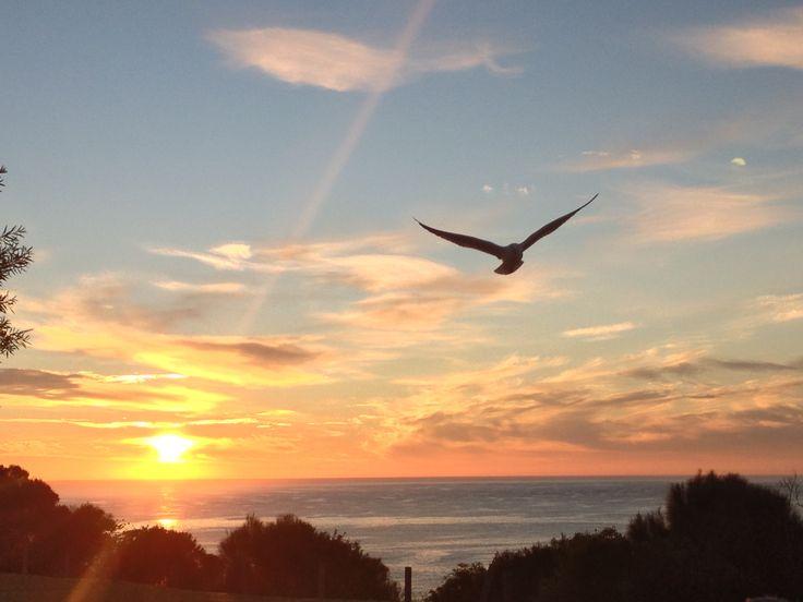 Sunrise in Merimbula, Australia