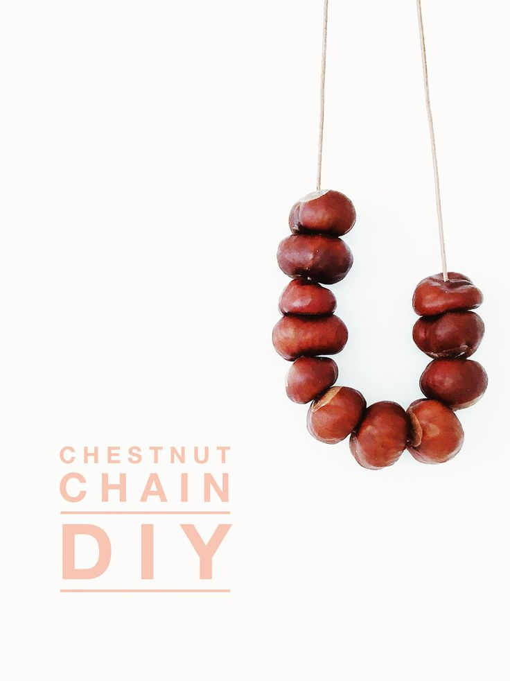 chestnut chain DIY tutorial // make easy + natural autumn decoration || Kastanienkette // einfache, natürlich Dekoration für den Herbst aus Kastanien basteln || Anleitung von knobz