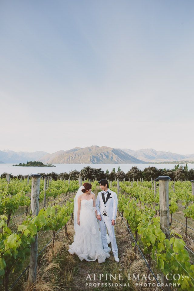 Love in the vines at Rippon vineyard.