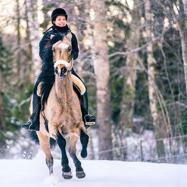 Horseback riding in Tiveden with @LinaVestman. What's your favorite outdoor adventure?  #horse #riding #tiveden #sweden #visitsweden