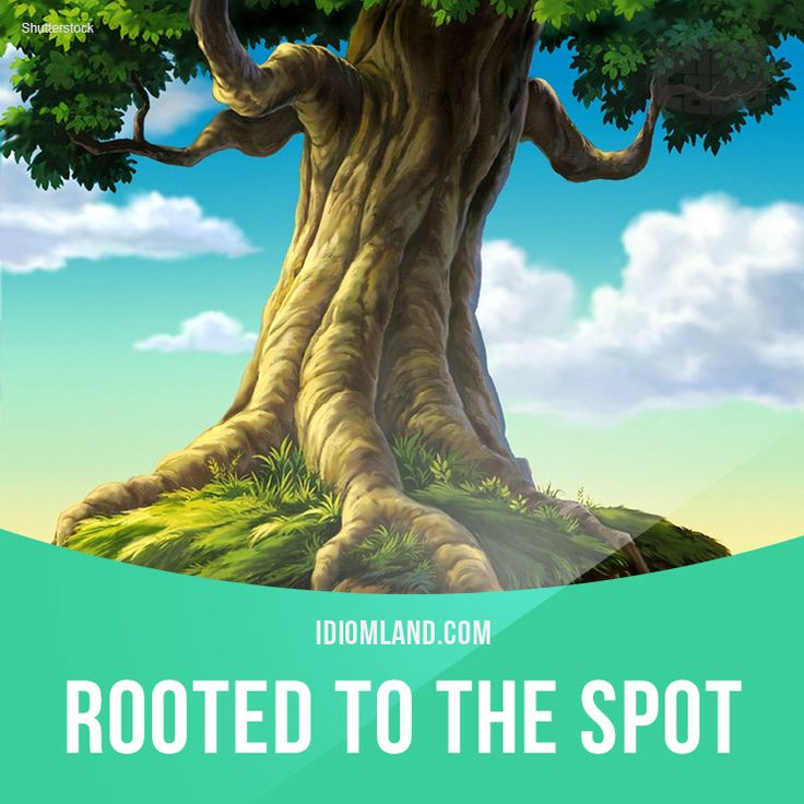 """Rooted to the spot"" means ""unable to move because of fear or surprise"". Example: Jane stood rooted to the spot when she saw the ghost."