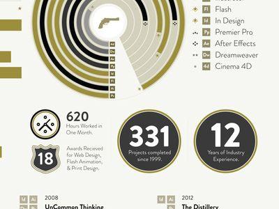 66 best INFOGRAPHIC RESUME DESIGN images on Pinterest Resume - flash designer resume