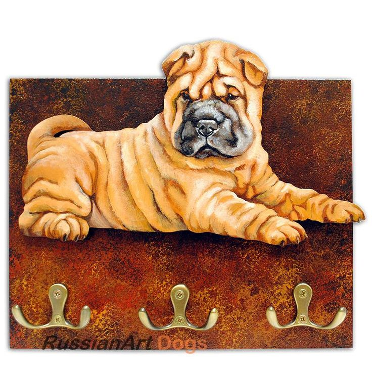 Shar pei, puppy dog Hanger / holder leashes, ANY COLOR figurine, rack key of wood, handmade, acrylic paint by RussianArtDogs on Etsy