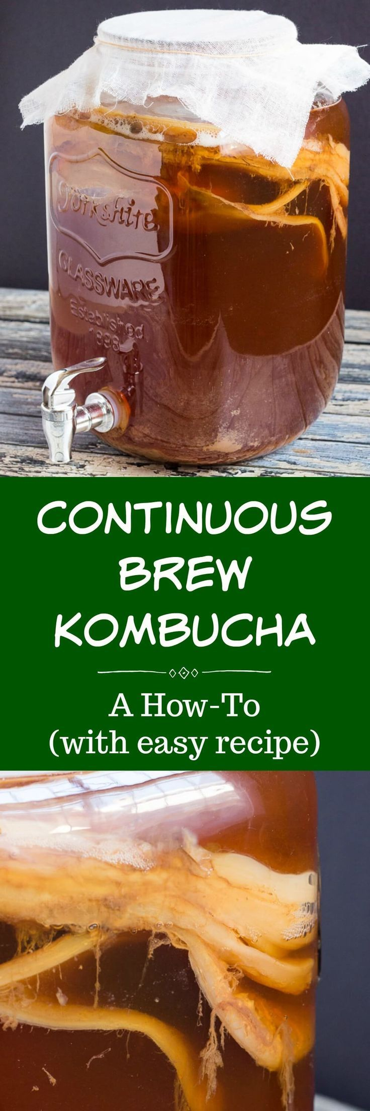 The Continuous Brew Kombucha Method is an easy way to ensure you always have a steady supply of this refreshing, probiotic-rich drink.  All you need is a SCOBY and some sweetened black tea, and you will be well on your way to greater gut health. #kombucha #kombuchatea #thecookspyjamas #howtomake #recipe #benefits #continuousbrew