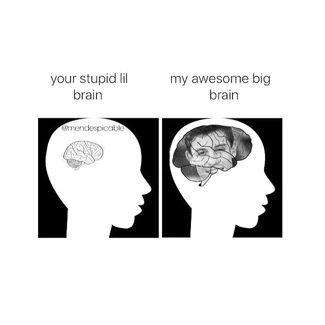 So true!!! My brain is made up of all Shawn Mendes