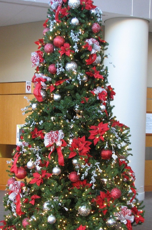 368 best OHIO STATE CHRISTMAS images on Pinterest | Ohio state ...