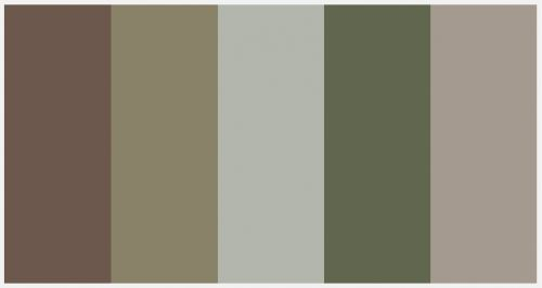 I like this color palette for the two bedrooms and bathroom on the south side of the house, maybe a bit warmner though  Light Camo Color Palette