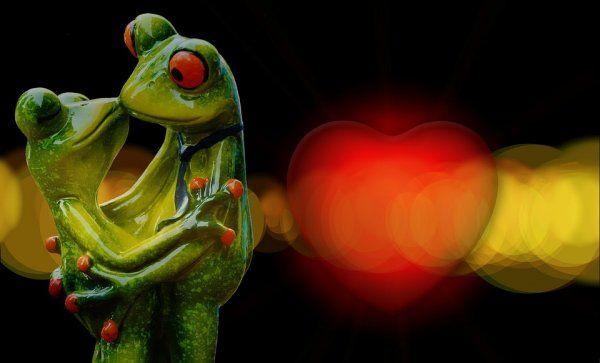 Ученые заявили, что секс помогает избавиться от похмелья http://actualnews.org/nauka/171287-uchenye-zayavili-chto-seks-pomogaet-izbavitsya-ot-pohmelya.html  Бразильские ученые заявили, что секс помогает избавиться от похмелья. Все дело в том, что во время интимной близости в организме мужчины вырабатывается тестостерон, а в организме женщины - пролактин. Эти гормоны стимулируют работу органов, отвечающих за выброс вредных веществ.