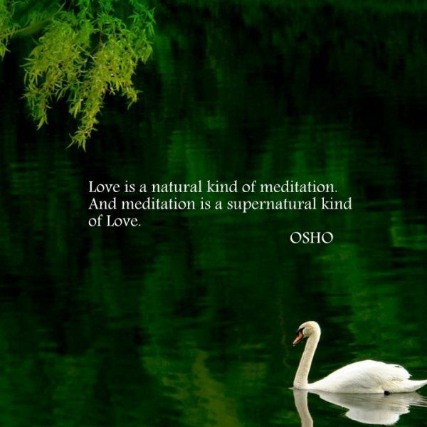 "Osho: ""Love is a natural kind of meditation. And meditation is a supernatural kind of Love."""