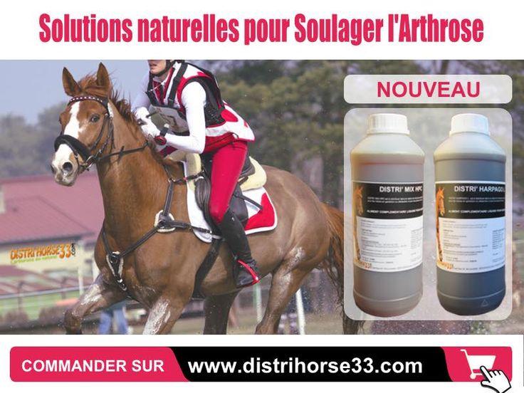 http://www.distrihorse33.com/64-arthrose-chez-le-cheval