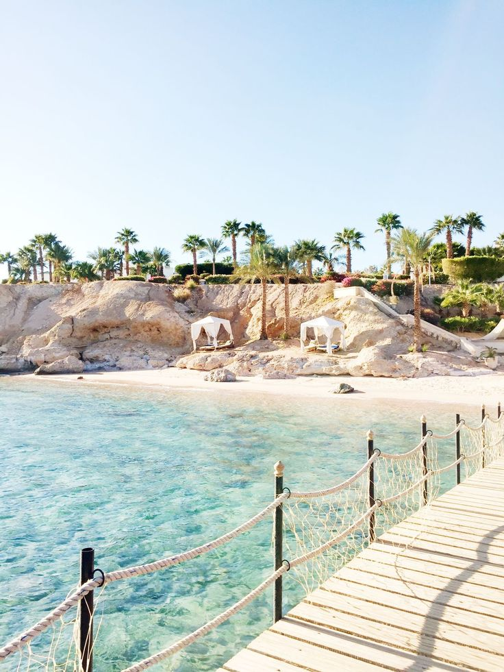 Sharm el-Sheikh, Egypt (Bougeotte)