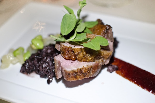Rooibos Tea Marinated Pennsylvania Duck Breast with Bing Cherries, Fennel, Soy Beans, Forbidden Black Rice at Harvest (Cambridge, Massachusetts), paired with Bridlewood Paso Robles Cabernet Sauvignon ~ http://forkitoverboston.blogspot.com/2012/04/viognier-is-like-paris-hilton.html