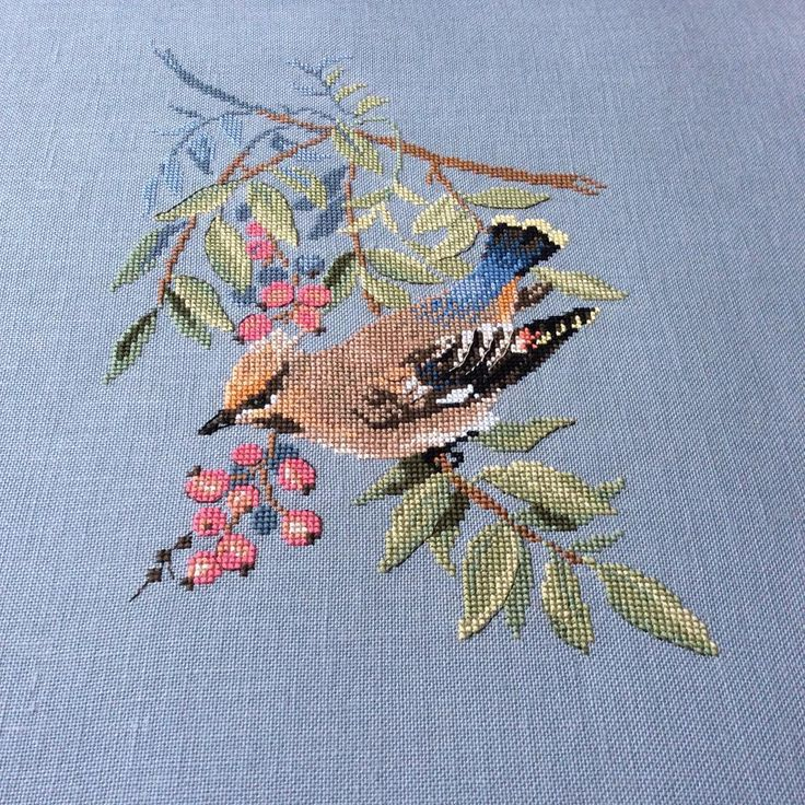 Bird and berries.
