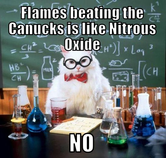#Canucks Flames Memes Chemistry Cat more at http://funnytoptens.blogspot.ca