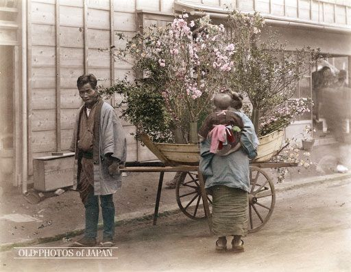 1890's. Flower Peddler. A flower peddler wearing a happi coat pulls a boat-shaped cart filled with flowering branches. A woman carrying a child on her back is carefully examining his wares. In the back two people can be seen observing the scene from inside what appears to be a shop.