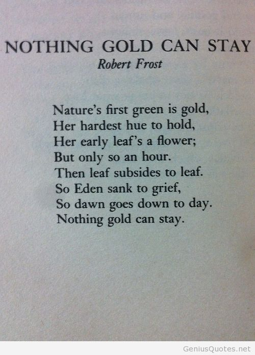Nothing Gold Can Stay - Robert Frost