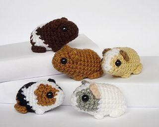 Newborn guinea pig pattern