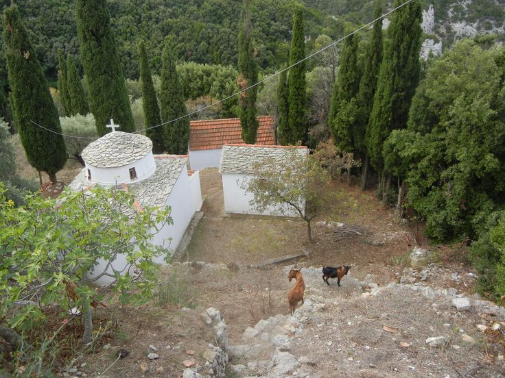 Church and Goats