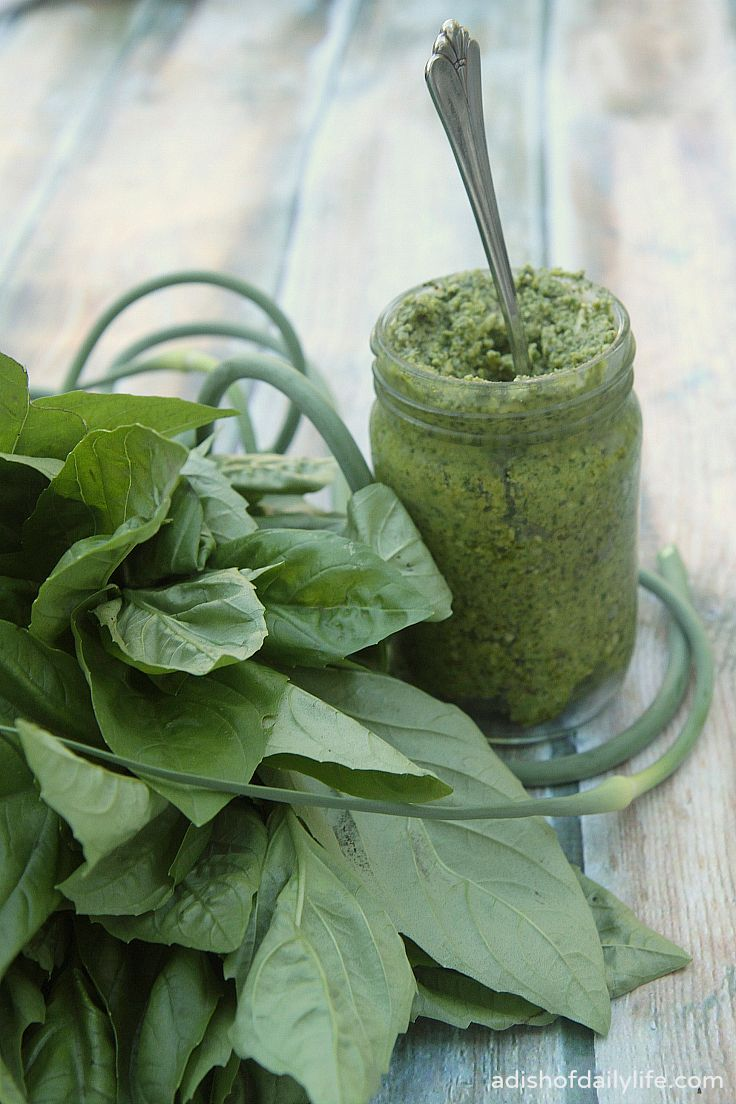 Garlic Scape, Basil, and Almond Pesto | A Dish of Daily Life
