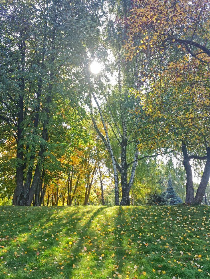 Ранняя осень в Царицыно