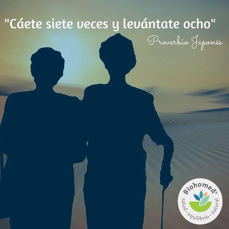 Esperemos que este día este lleno de aprendizaje y buenas experiencias. Recuerda que una sonrisa puede cambiarlo todo. #CasaBiohomed te acompañará siempre. #Quote #Frase