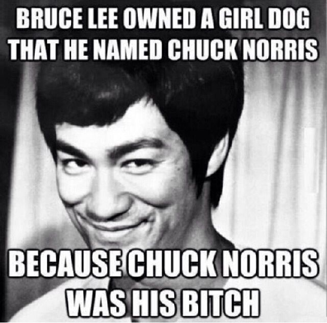 Best Bruce Ree Images On Pinterest Advertising Artists And - 22 ridiculous chuck norris memes