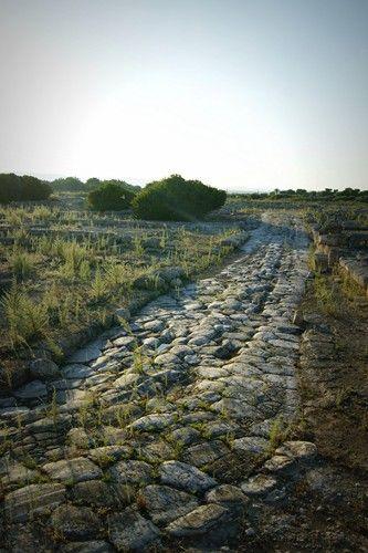 Via Traiana crossing Egnazia ruins, Puglia, Italy | Picture by Michele Miccoli
