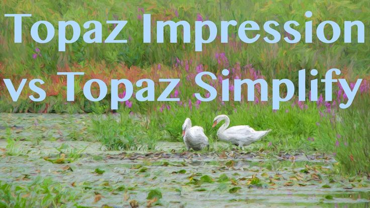 Topaz Simplify vs Topaz Impression