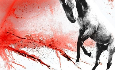 "Saatchi Online Artist Laurent de Posson; Photography, ""Lava Horse"" #art"