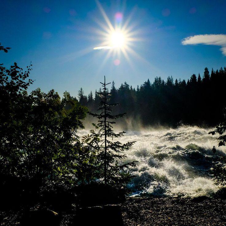 Vad vore ett besök i Vidsel utan en bild från Storforsen? #storforsen #vidsel #nature #sweden #fujifilmx #x100f
