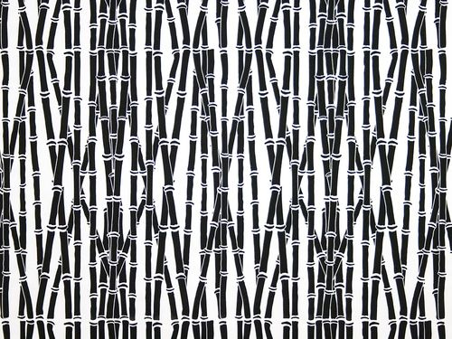Bamboo Forest in Coal on White