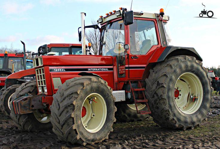 IH 1255 International Tractor | Foto International 1255 XL #717574