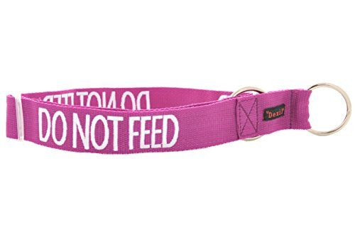DO NOT FEED Purple Color Coded Semi-Choke Dog Collar (May Have Allergies) PREVENTS Accidents By Warning Others of Your Dog in Advance