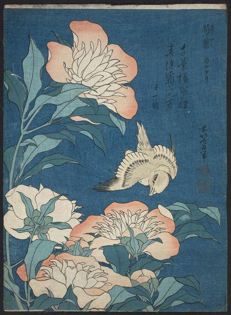 葛飾北斎 Katsushika Hokusai_Peonies and Canary