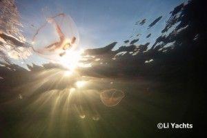 Jellyfish dance in Baltic Sea