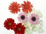Цветы - обои для рабочего стола компьютера windows Галерея #23